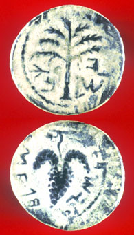 Bronze Coin Minted During the Bar Kochba Revolt